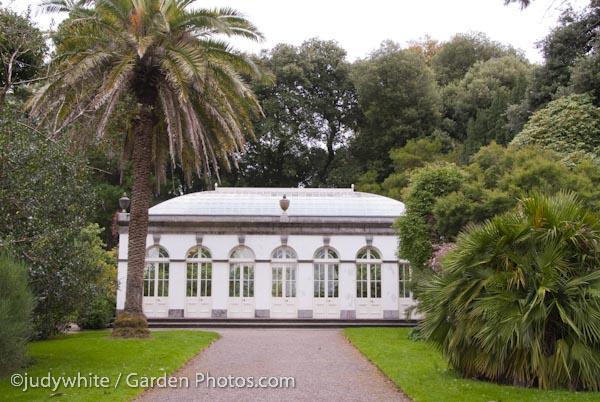 Fota-Arboretum-Orangerie-017424