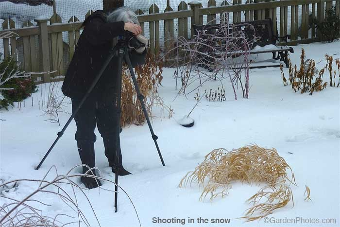 ShootingintheSnowP0621