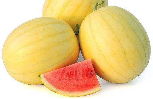 WatermelonFaerieAAS