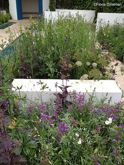 Lovely tangly plantings in The RBC Blue Water Garden (Silver-Gilt). Image © Fiona Gilsenan
