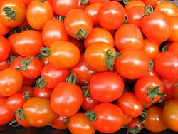 Tomato 'Apero', rated highl;y for sweetness and flavour by the RHS. Image ©RHS