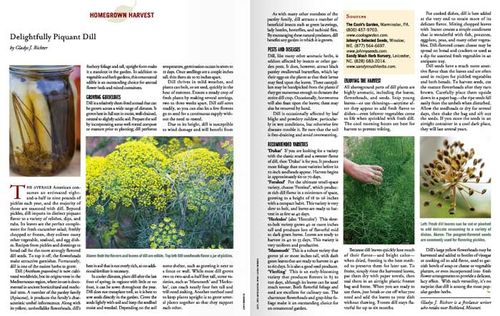 Delightfully Piqant Dill by Gladys J. Richter in The American Gardener. ©ANS