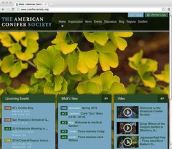 American Conifer Society website home page