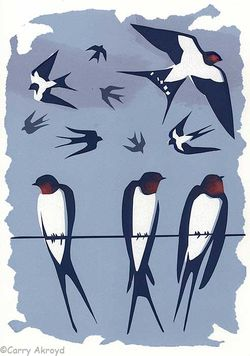 September Swallows by Carry Akroyd from Tweet Of The Day. Image ©Carry Akroyd