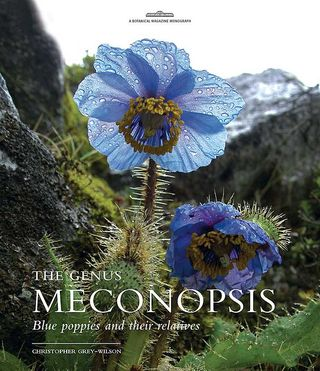 The Genus Meconopsis by Christopher Grey-Wilson