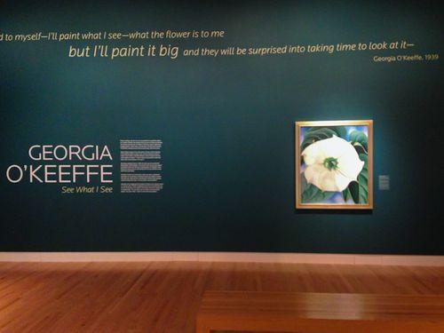 Georgia O'Keeffe's Jimson Weed display. Image GardenPhotos.com