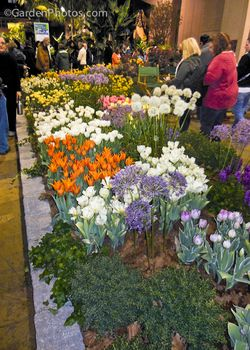 Jacques Armand International exhibit at the Philadelphia Flower Show. Image ©GardenPhotos.com