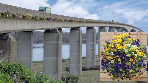 160 baskets of Viola 'Waterfall' on a bridge in Suffolk. Images © Thompson & Morgan