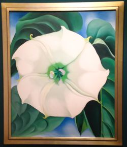 Georgia O'Keeffe's Jimson Weed.