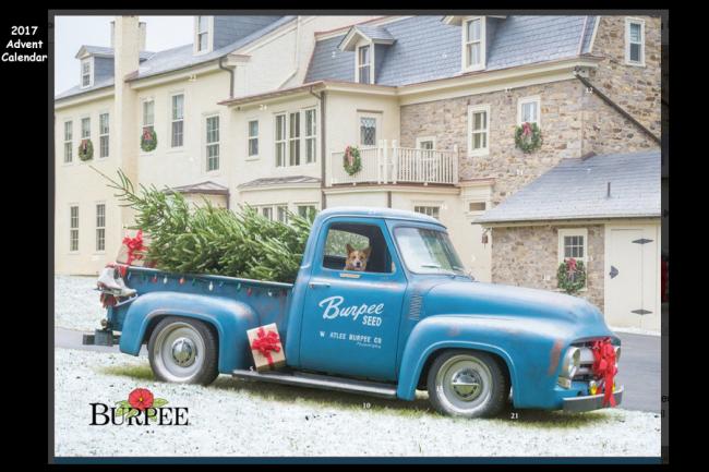 Burpee 2017 Advent Calendar