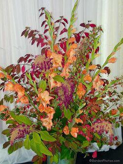 Gladioli, amaranth and burning bush at Rachel's wedding. Image ©GardenPhotos.com