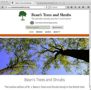 Bean's Trees and Shrubs Online.