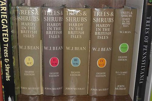 The five volumes of Bean's Trees and Shrubs. Image ©GardenPhotos.com