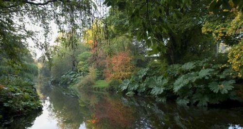 Mount Usher garden Image © Jonathan Hession from The Irish garden