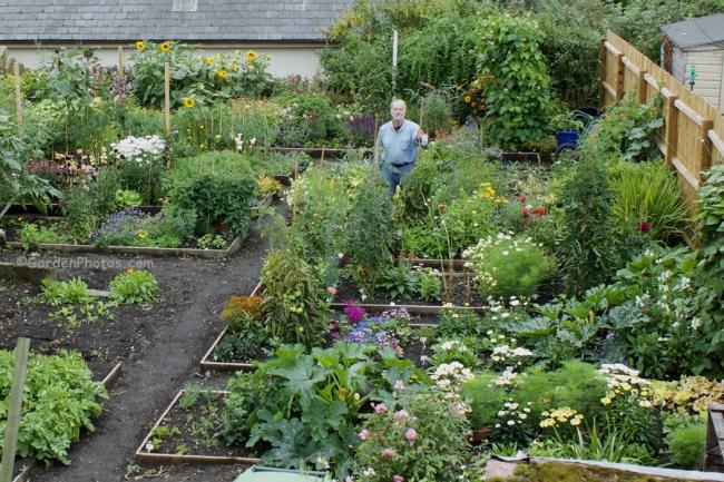 Part of my new Northamptonshire trial garden.  Image ©GardenPhotos.com